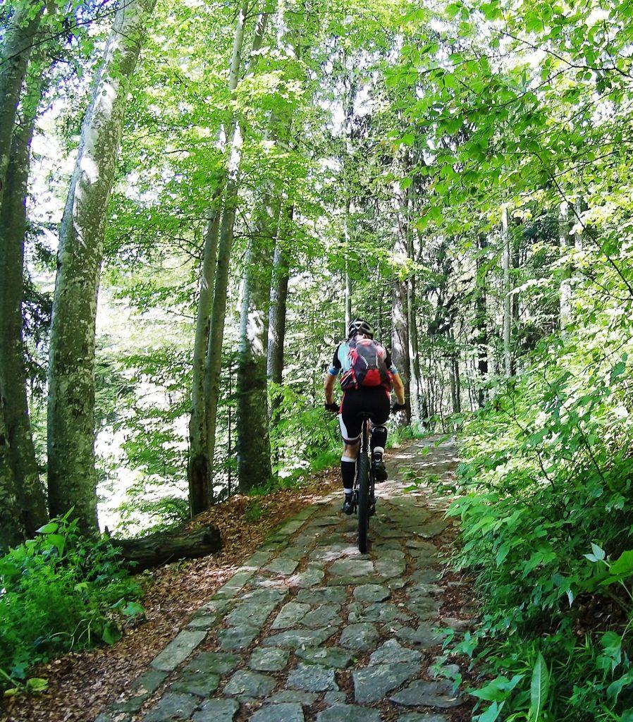 Cultural trails