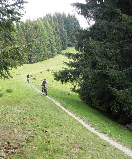 Cycling in Bucegi