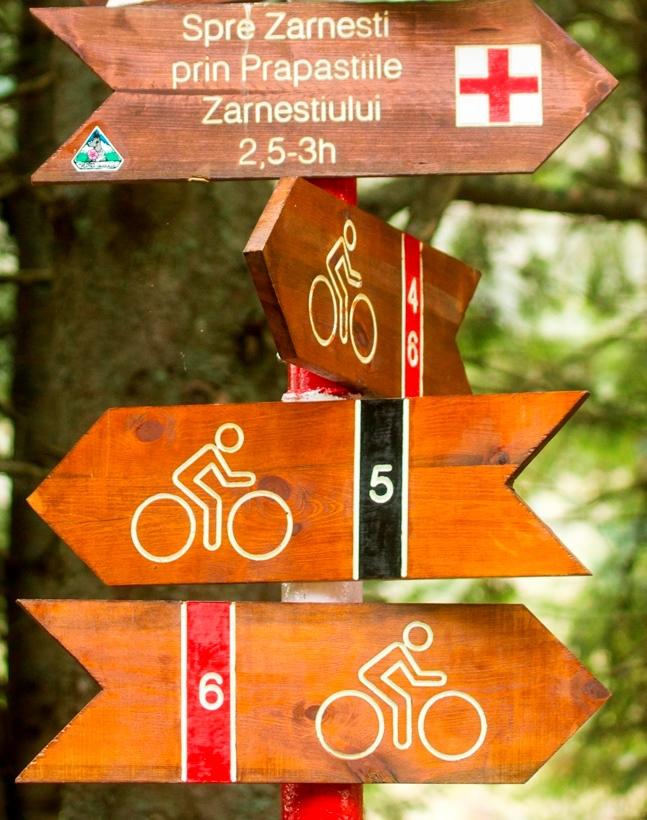 Cycling trails in Piatra Craiului
